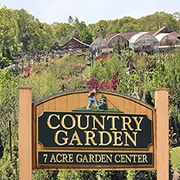 Hyannis Country Garden